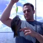 2013 aug 3rd lake mendota bass